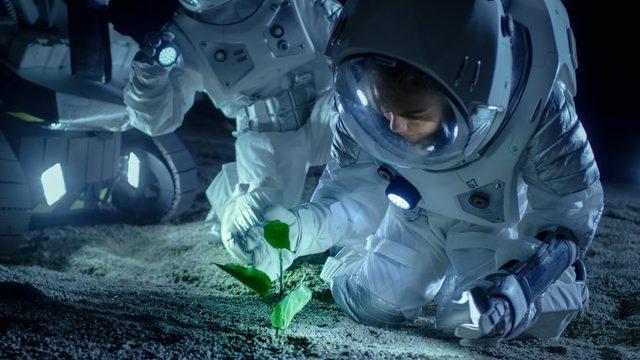 Dünyanın başka gezegenlerdeki yaşam arayışı sürüyor.